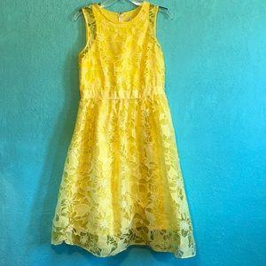 Size 10 A line lace overlay dress